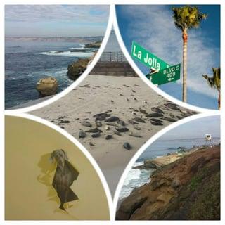 Fun_southern_coast_La_Jolla.jpg